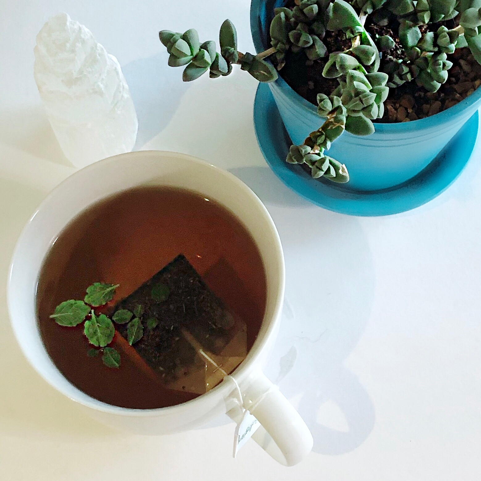 peppermint tea with a succulent and selenite crystal